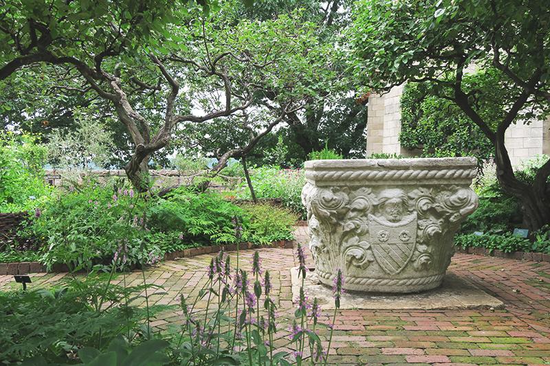 Clo_garden2
